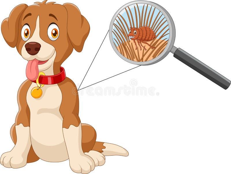 Perro infestado pulga de la historieta stock de ilustración