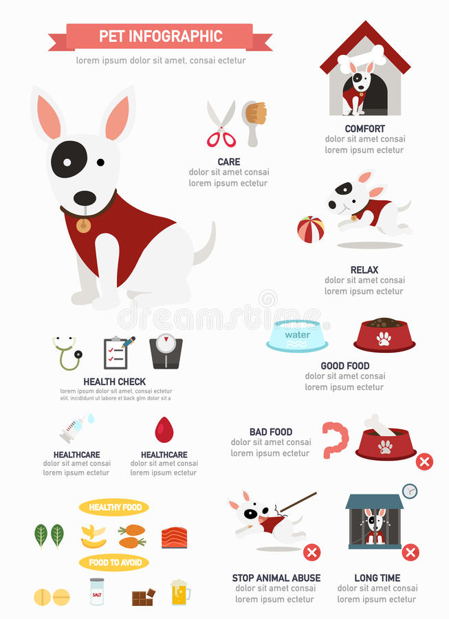 Perro infographic, vector libre illustration