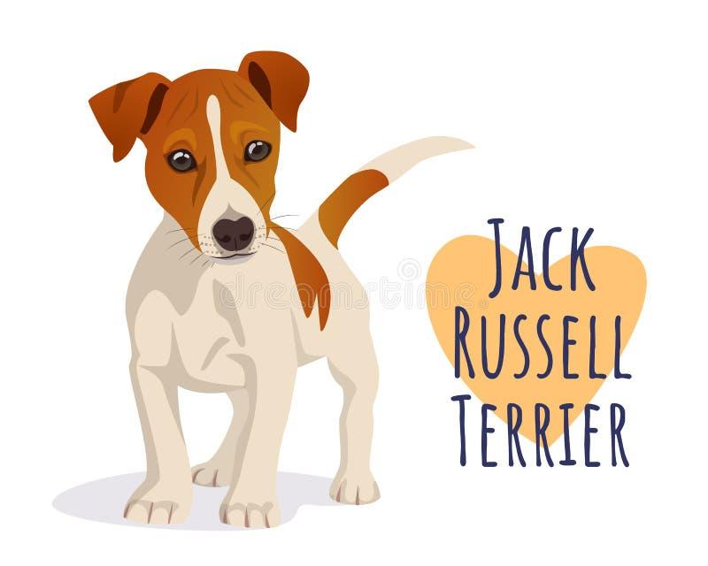 Perro lindo del terrier de Gato Russell stock de ilustración