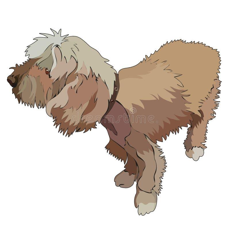 Perro lindo lanudo Ilustración del vector libre illustration