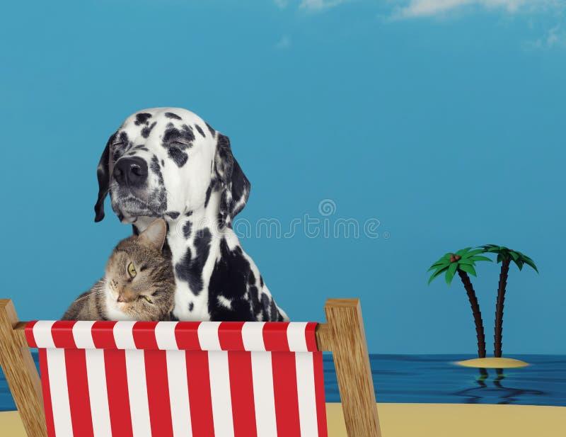 Perro lindo y gato que se relajan en una silla de cubierta roja en la playa foto de archivo