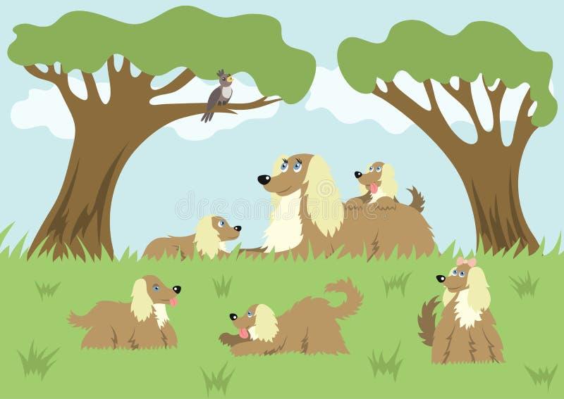 Perro mullido y sus perritos stock de ilustración