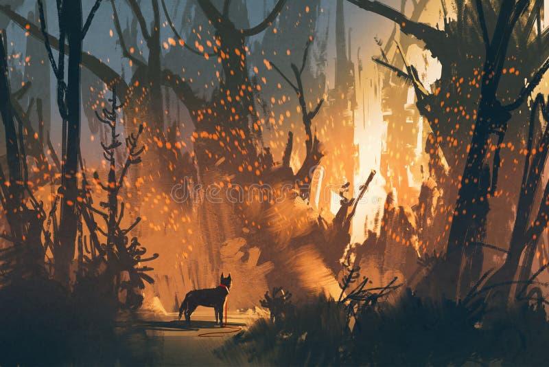 Perro perdido en el bosque con la luz mística stock de ilustración