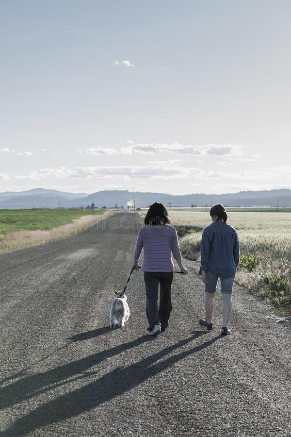 Perro que camina de la madre y de la hija fotografía de archivo