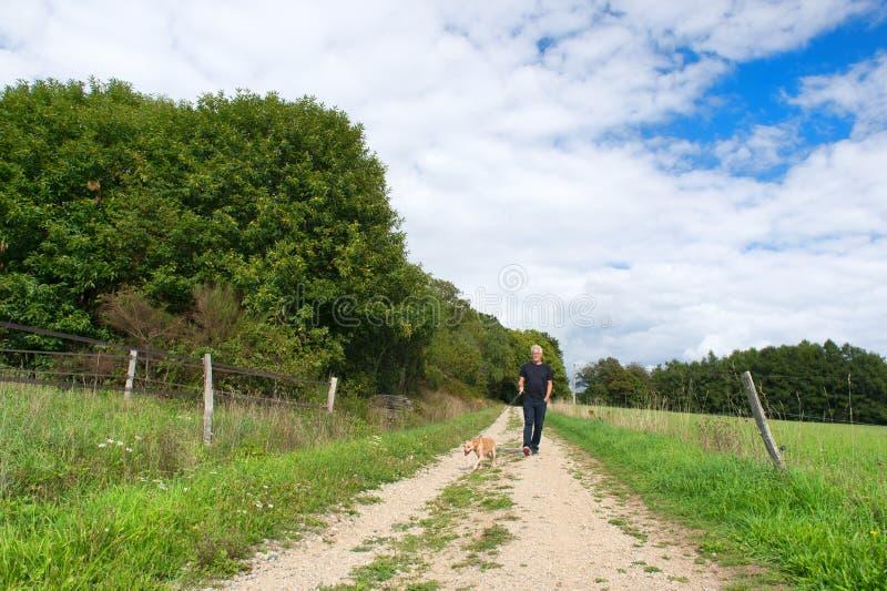 Perro que camina del hombre en naturaleza fotografía de archivo