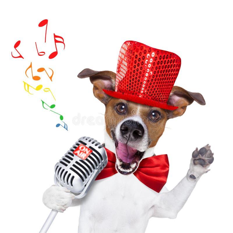 Perro que canta con el micrófono imagen de archivo