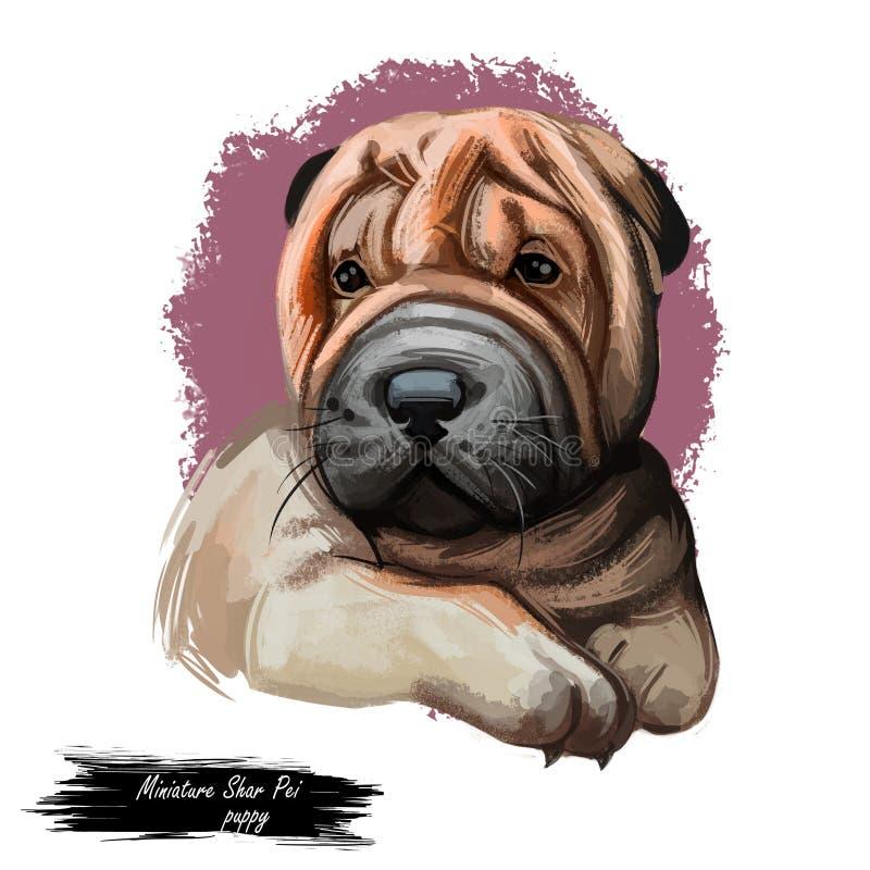 Perro shar miniatura del pei, perrito del arte digital del origen chino ilustración del vector