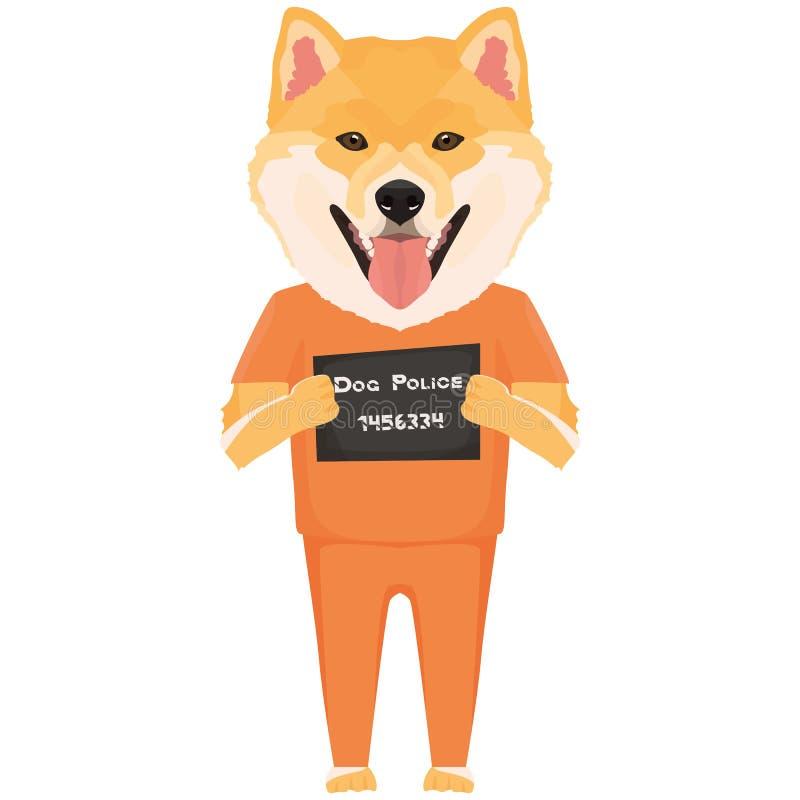 Perro Shiba Inu de la ropa de la prisi?n del Mugshot stock de ilustración