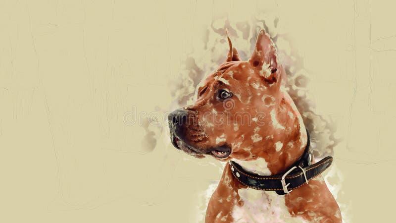 Perro solo, esperando al dueño, guardando el lugar de sus paseos comunes en el invierno Anhelo del perro foto de archivo libre de regalías