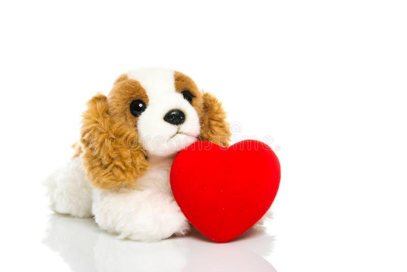 Perro y corazón fotografía de archivo