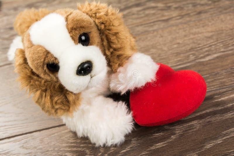 Perro y corazón foto de archivo