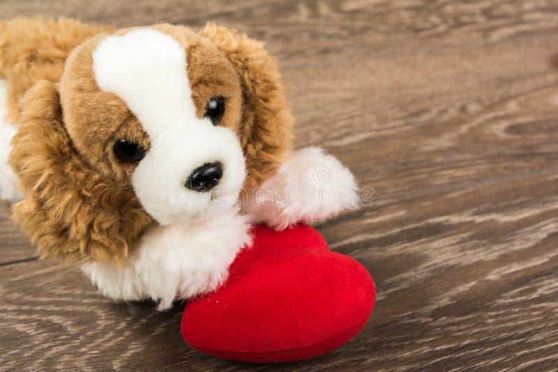 Perro y corazón imagenes de archivo