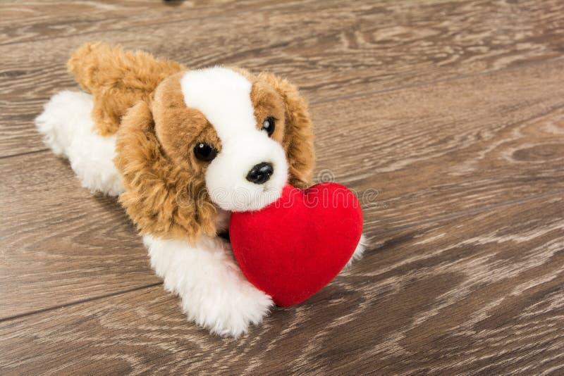 Perro y corazón imagen de archivo libre de regalías