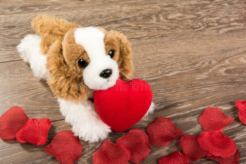 Perro y corazón imagen de archivo
