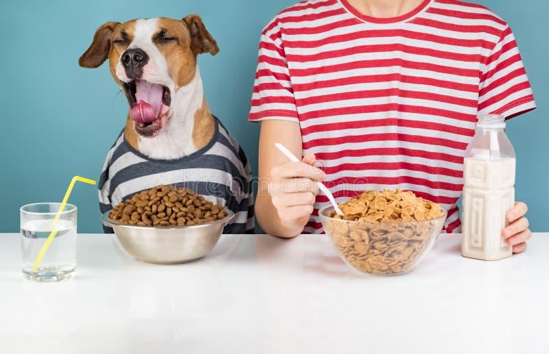 Perro y humano soñolientos desayunando junto Enfermedad de Minimalistic imagenes de archivo