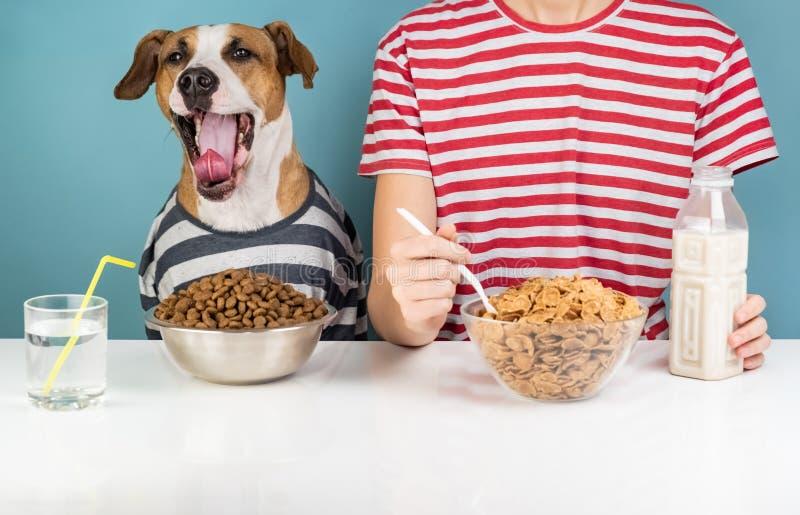 Perro y humano soñolientos desayunando junto Enfermedad de Minimalistic imágenes de archivo libres de regalías