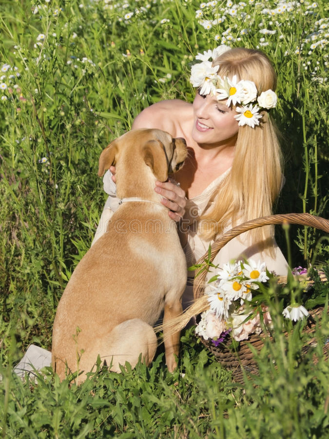 Perro y rubio imágenes de archivo libres de regalías