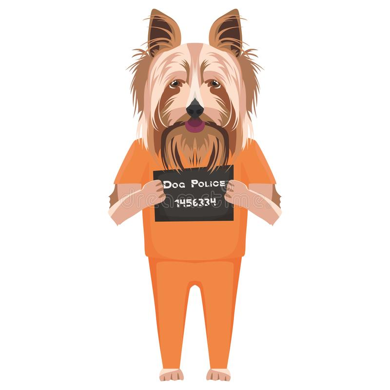 Perro Yorkshire Terrier de la ropa de la prisi?n del Mugshot libre illustration