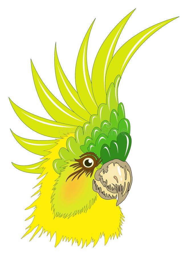 Perroquet illustration de vecteur