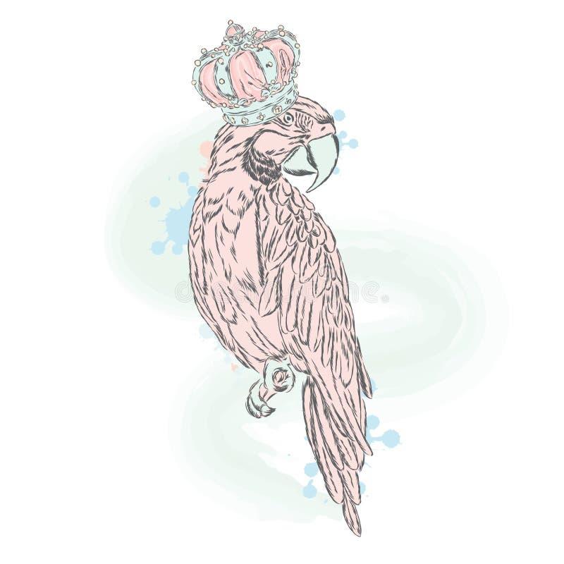 Perroquet doux dans la couronne Nuances dernier cri illustration stock