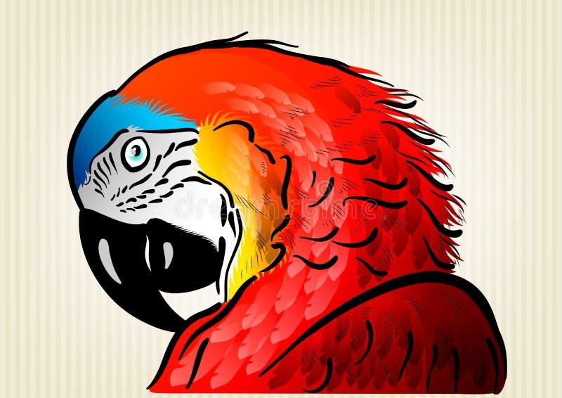 Perroquet rouge illustration libre de droits