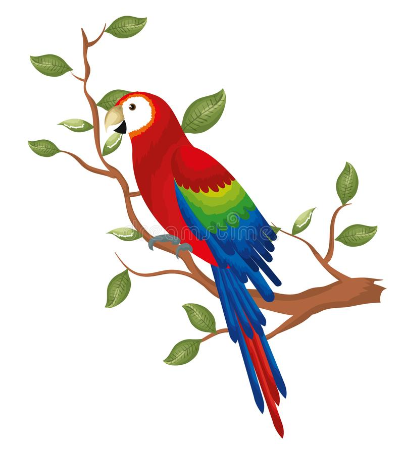 Perroquet tropical dans l'arbre de branche illustration stock