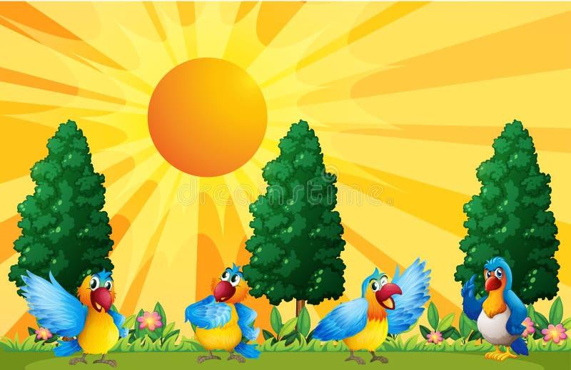 Perroquets dans le domaine illustration de vecteur