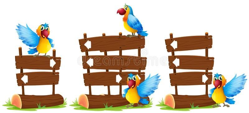 Perroquets par le signe en bois illustration de vecteur