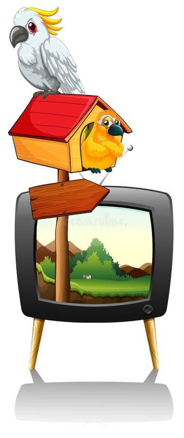 Perroquets sur l'écran de télévision illustration de vecteur