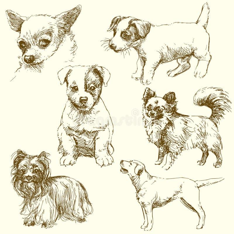 Perros ilustración del vector