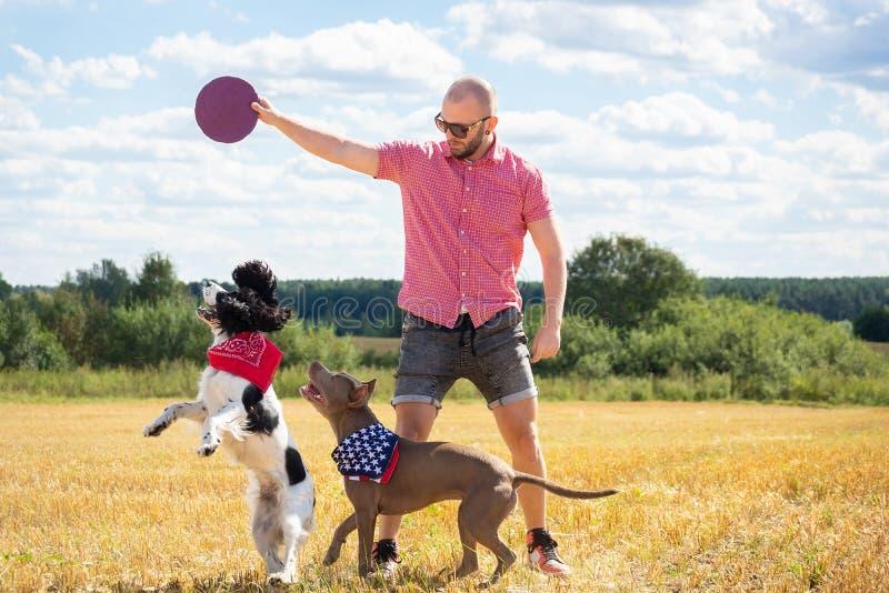 Perros del entrenamiento en el sitio foto de archivo libre de regalías