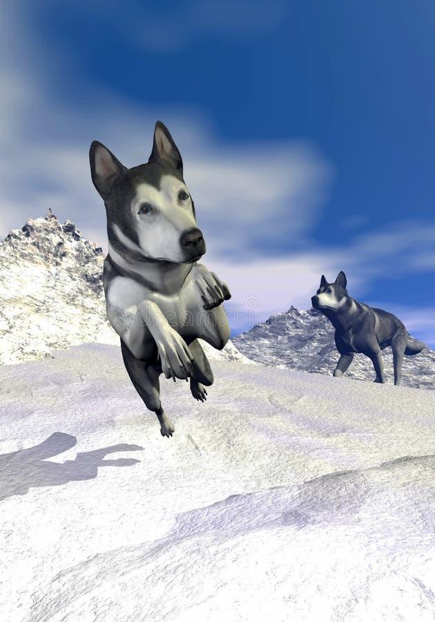 Perros del Malamute en la montaña - 3D rinden libre illustration