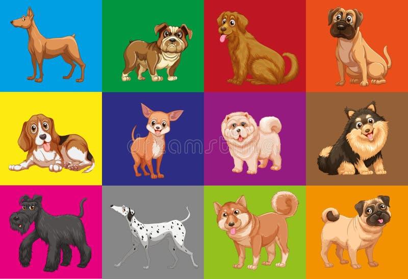 Perros en cuadrado ilustración del vector