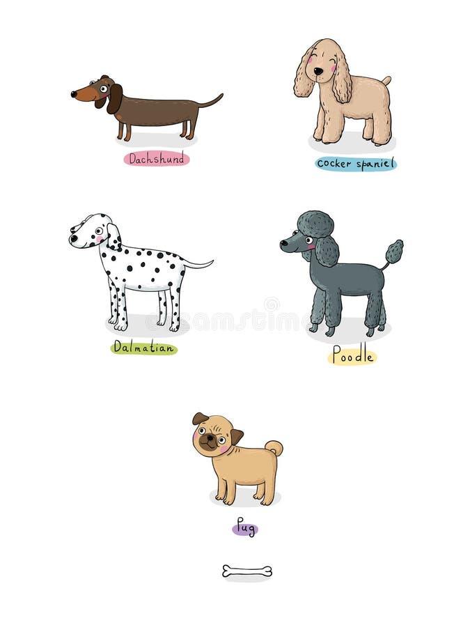 Perros lindos de la historieta de diversas razas stock de ilustración