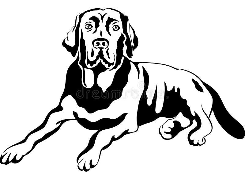Perros perdigueros de Labrador de la casta del perro del bosquejo libre illustration