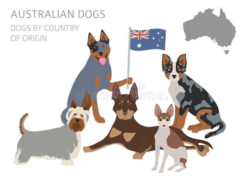 Perros por el país de origen Las razas australianas del perro, Nueva Zelanda hacen ilustración del vector