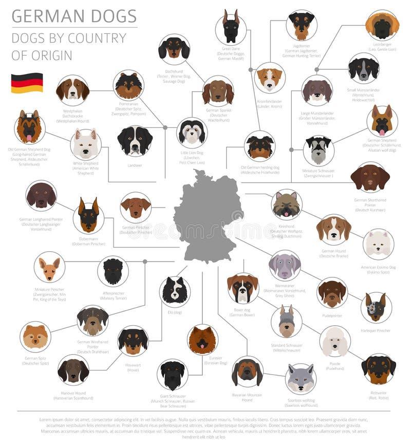 Perros por el país de origen Razas alemanas del perro Templa de Infographic stock de ilustración