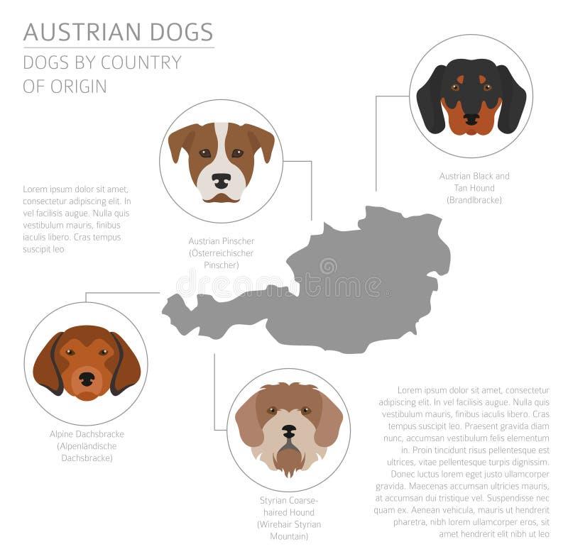 Perros por el país de origen Razas austríacas del perro Temporeros de Infographic ilustración del vector