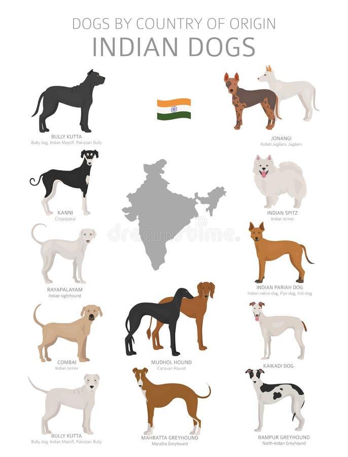 Perros por el pa?s de origen Razas indias del perro Sistema de los perros de los pastores, de la caza, de la reuni?n, del juguete libre illustration