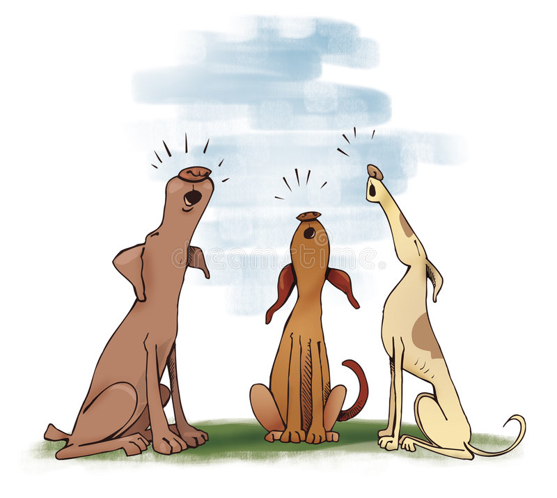 Perros que gritan