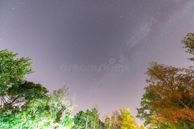Perseids流星雨 在夜夏天天空的流星 免版税库存图片