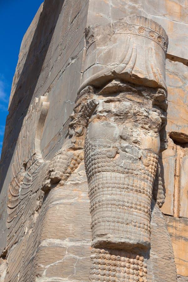 persepolis arkivbilder