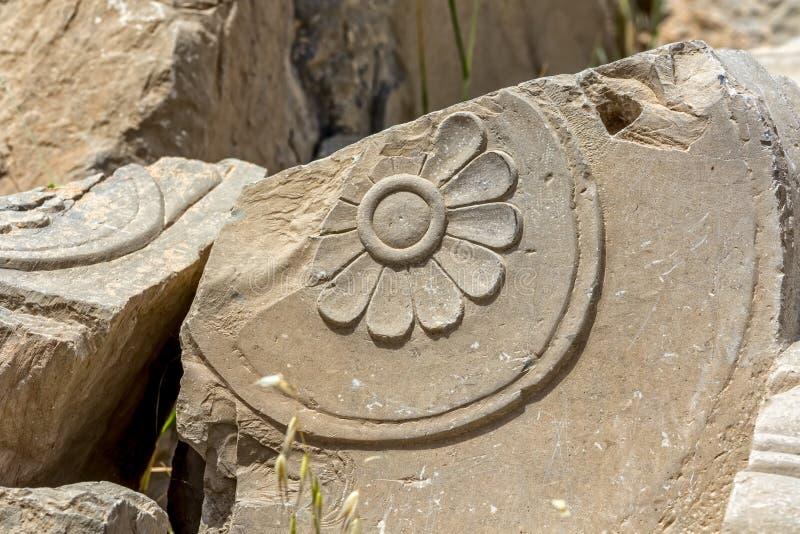 Persepolis fördärvar blommadetaljen royaltyfri foto