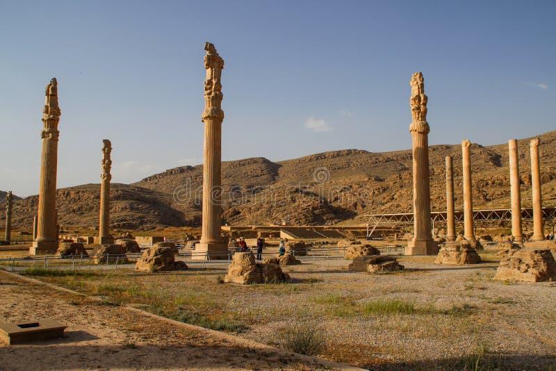 Persepolis ? la capitale del regno dell'achemenide vista dell'Iran Persia antica Bassorilievo sulle pareti di vecchie costruzioni immagini stock libere da diritti