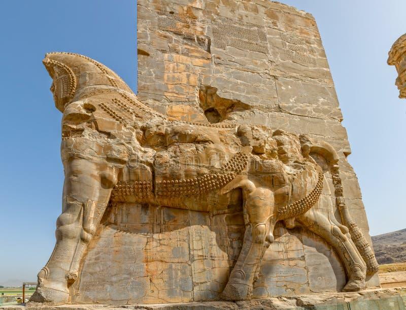 Persepolis Lamassu statyer royaltyfri fotografi