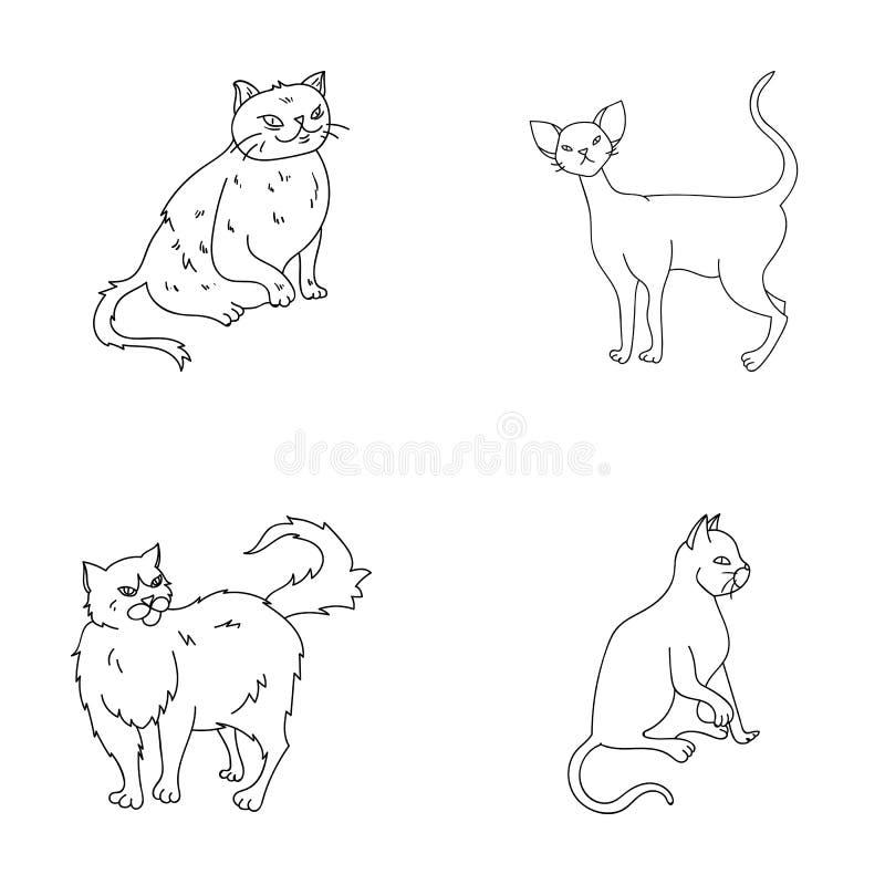 Perser, cornisk rex och annan art Symboler för samling för kattavel fastställda i materiel för symbol för översiktsstilvektor vektor illustrationer