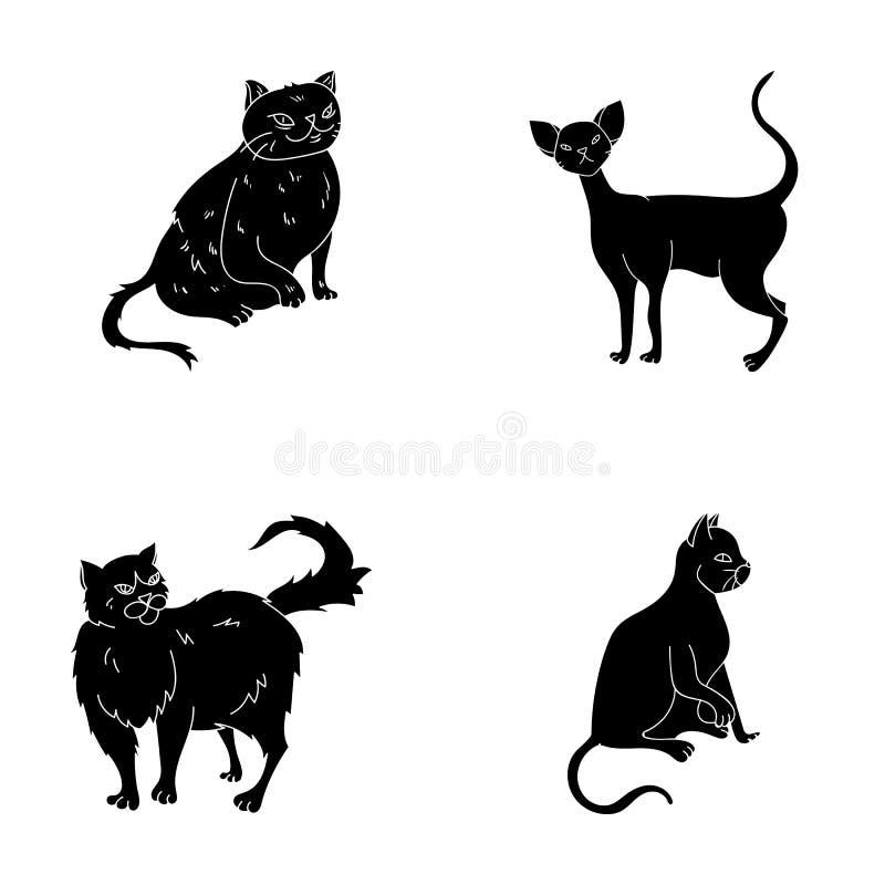 Perser, cornisk rex och annan art Symboler för samling för kattavel lagerför fastställda i svart stilvektorsymbol illustrationen vektor illustrationer