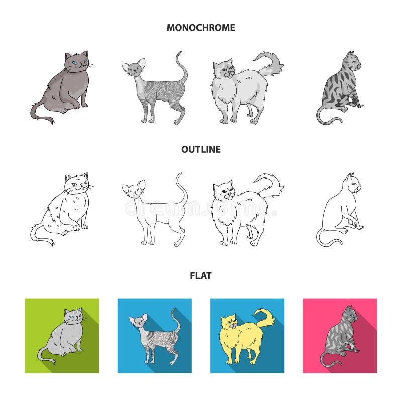 Perser, cornisk rex och annan art Symboler för samling för kattavel fastställda i lägenheten, översikt, monokromt stilvektorsymbo vektor illustrationer