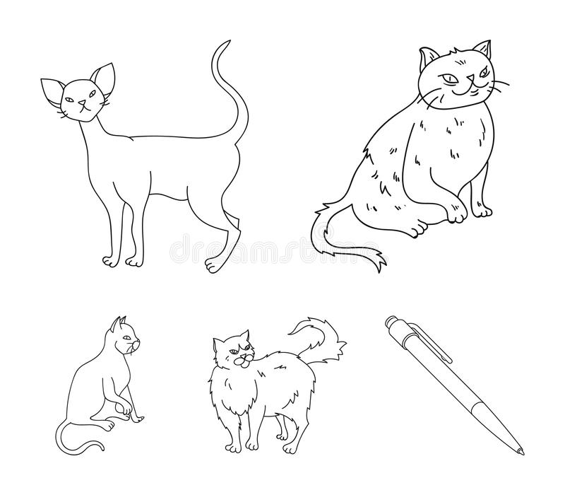 Perser, cornisk rex och annan art Symboler för samling för kattavel fastställda i materiel för symbol för översiktsstilvektor stock illustrationer