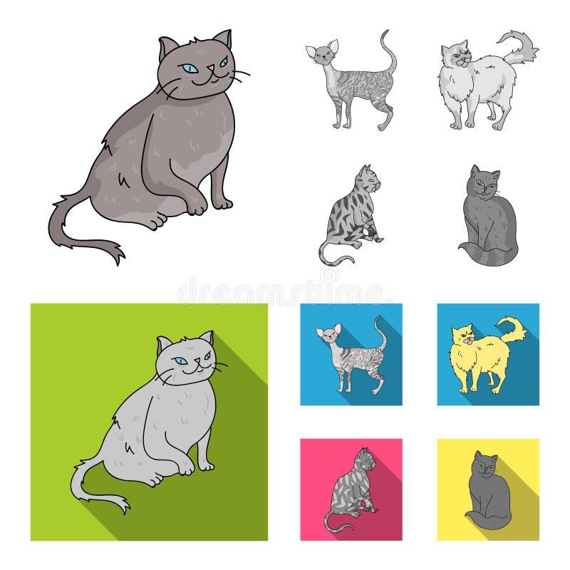 Perser, cornisk rex och annan art Symboler för samling för kattavel fastställda i monokrom, materiel för symbol för lägenhetstilv stock illustrationer